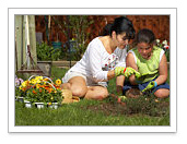 Plant a Spring GardenImprove Your Home and Your Life