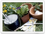Plant a Spring Garden - Improve Your Home and Your Life