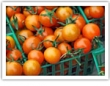 You Say Tomato... - Making the Most of the Summer Harvest - By Kirk Leins